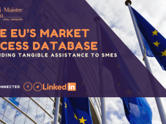 THE EU'S MARKET ACCESS DATABASE – PROVIDING TANGIBLE ASSISTANCE TO SMES