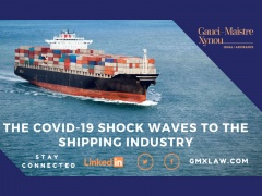 The Covid-19 shock waves to the shipping industry